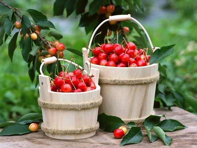 Cseresznyeünnep és pálinkázás, lekvárfőzés bográcsban           A japánok a cseresznyevirágzást, mi az érett gyümölcsöt ünnepeljük. Szerintem nekünk van igazunk.      A holnapi napot remek társaságban töltöm: a NekedTerem csapata meghívott Nagykörűre, a cseresznyefesztiválra egy kis...