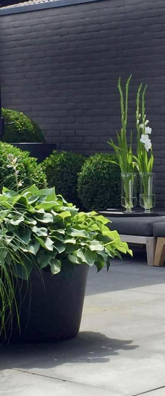 Green And White Landscaping Gray Brick Wall Brick Garden Brick Wall Gardens Patio Garden