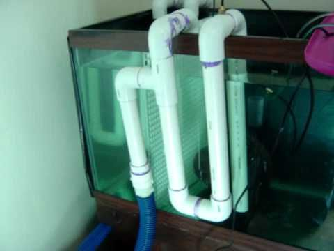 Diy Aquarium Overflow - 1000+ Aquarium Ideas