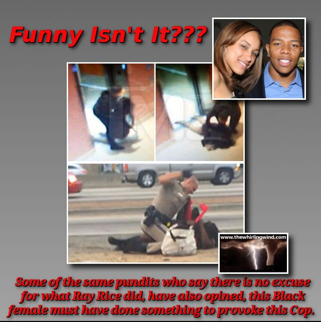 Gallery - Ray Rice Hypocrisy Meme
