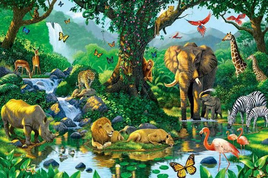Живые картинки животных для детей