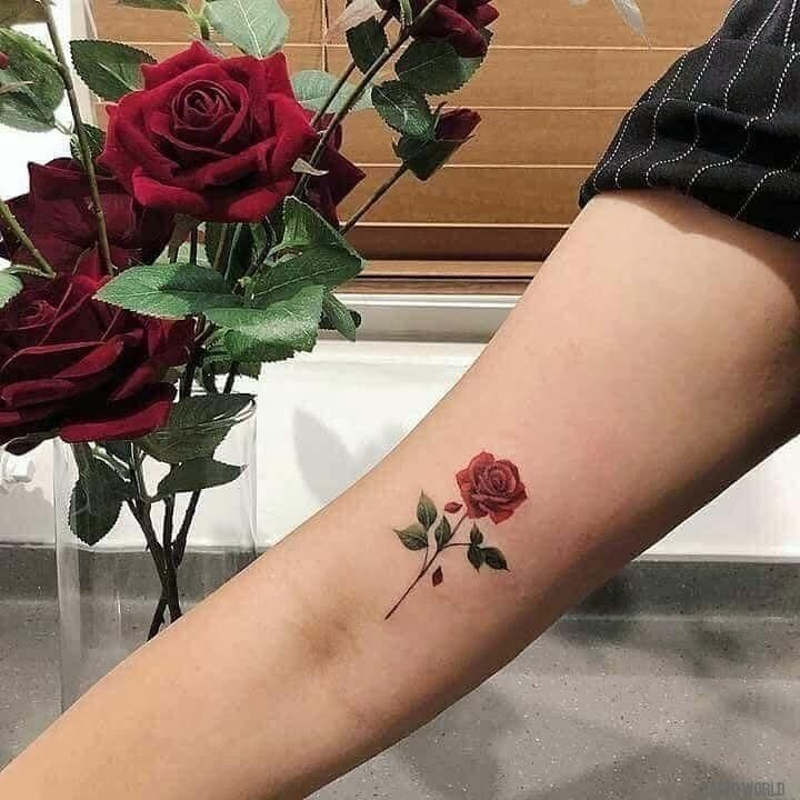 Photo of New Trend Small Tattoo Models – Page 13 of 30