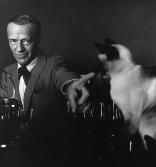 Fred Astaire. You cat. You.