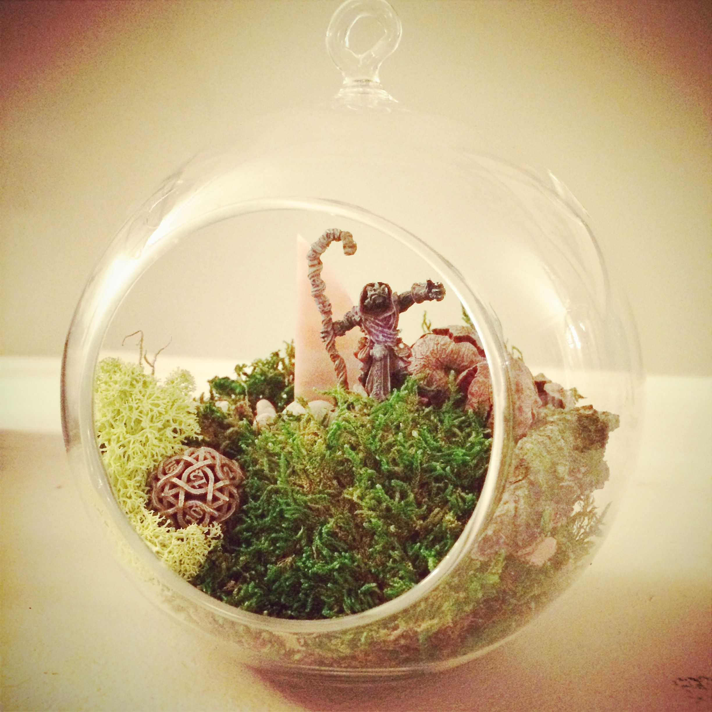 Nerdy Cute Terrarium With D20 And Dungeons And Dragon Dnd