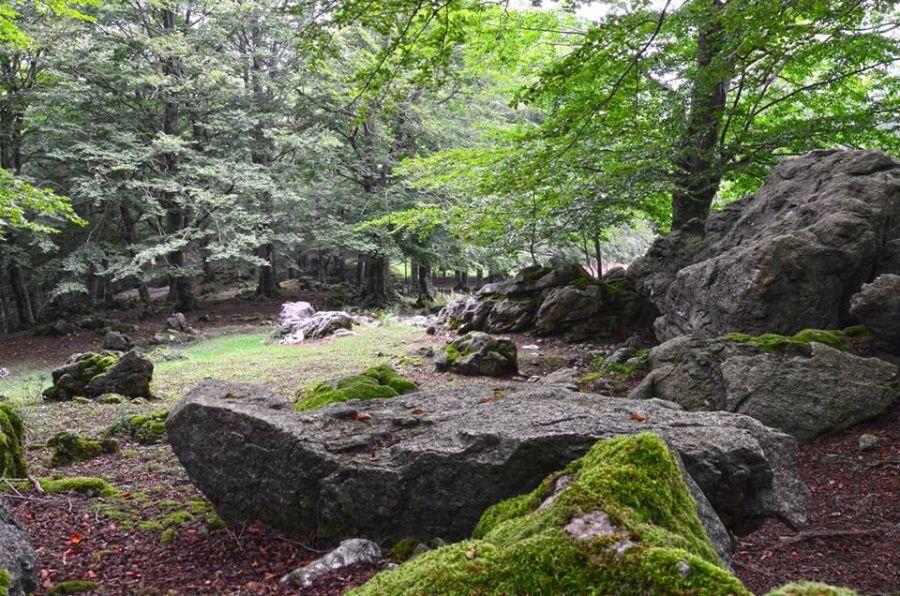 Monte Erbano, Gioia Sannitica