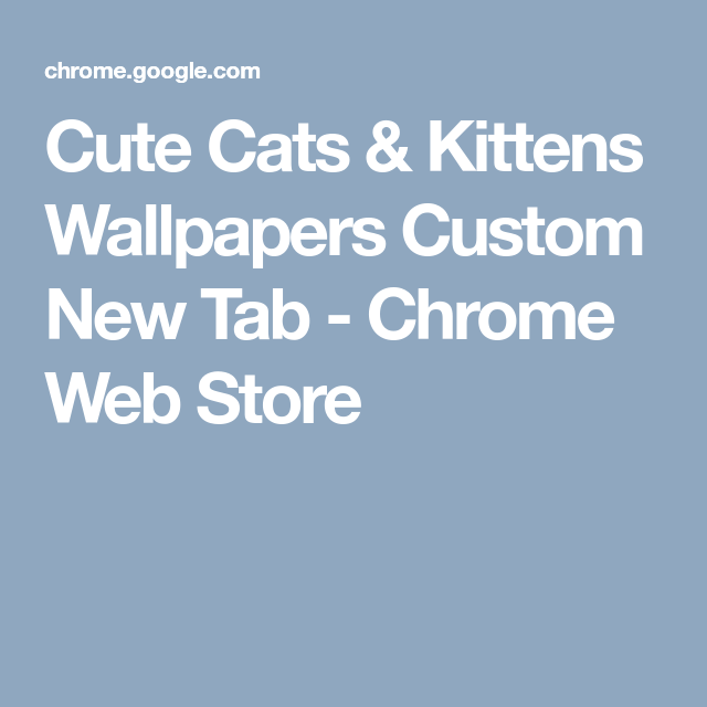 Cute Cats Kittens Wallpapers Custom New Tab Chrome Web Store Kitten Wallpaper Cute Cats And Kittens Cats And Kittens