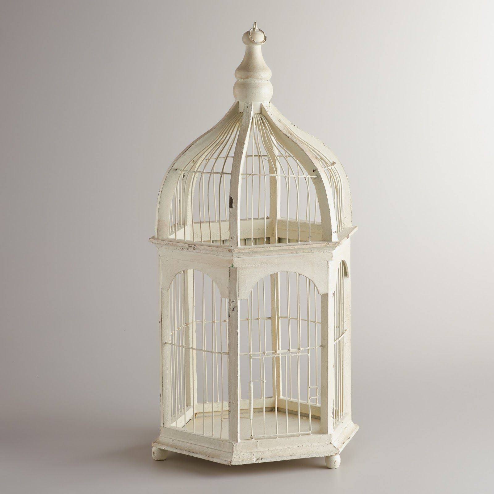 Birdcages A Hot Decorative Trend Bird cage decor, Decor