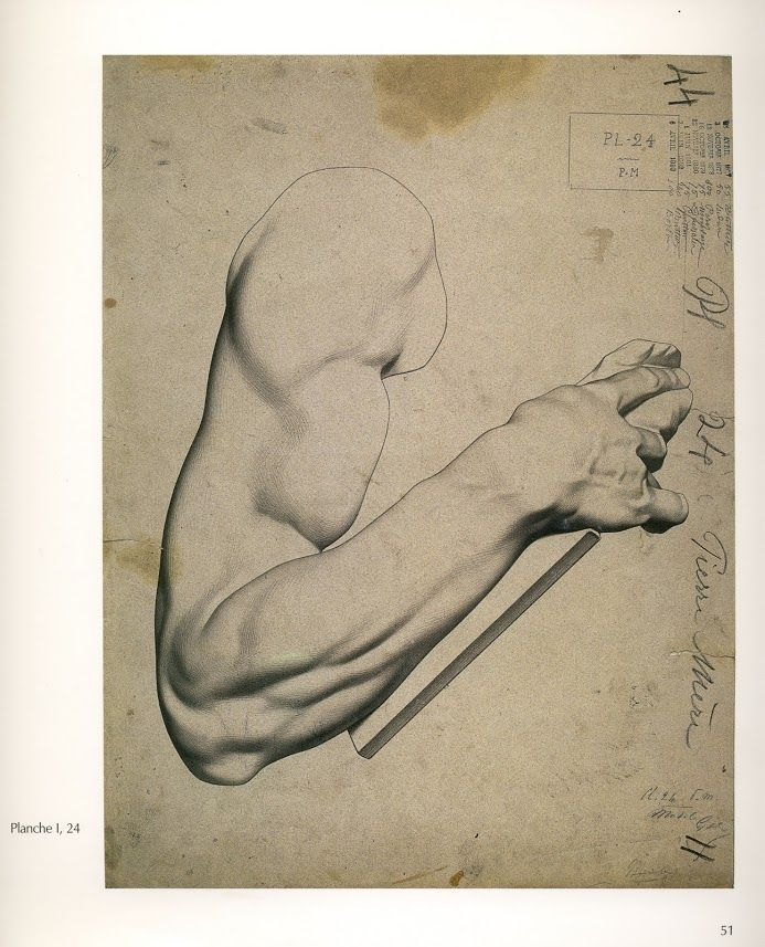 charles bargue drawing course pdf - Google Search | anatomy | Pinterest