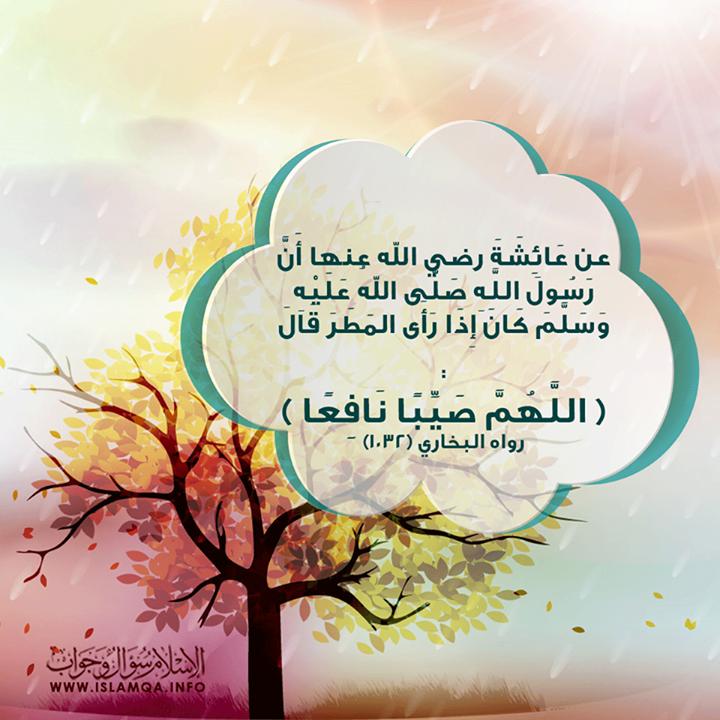 هل يستحب الدعاء عند نزول المطر وماذا يقال عند نزوله وعند سماع الرعد وهل يستحب التعرض للمطر الجواب Http Ift Tt 1qqcynj الجواب Islam Islamic Teachings Hadith