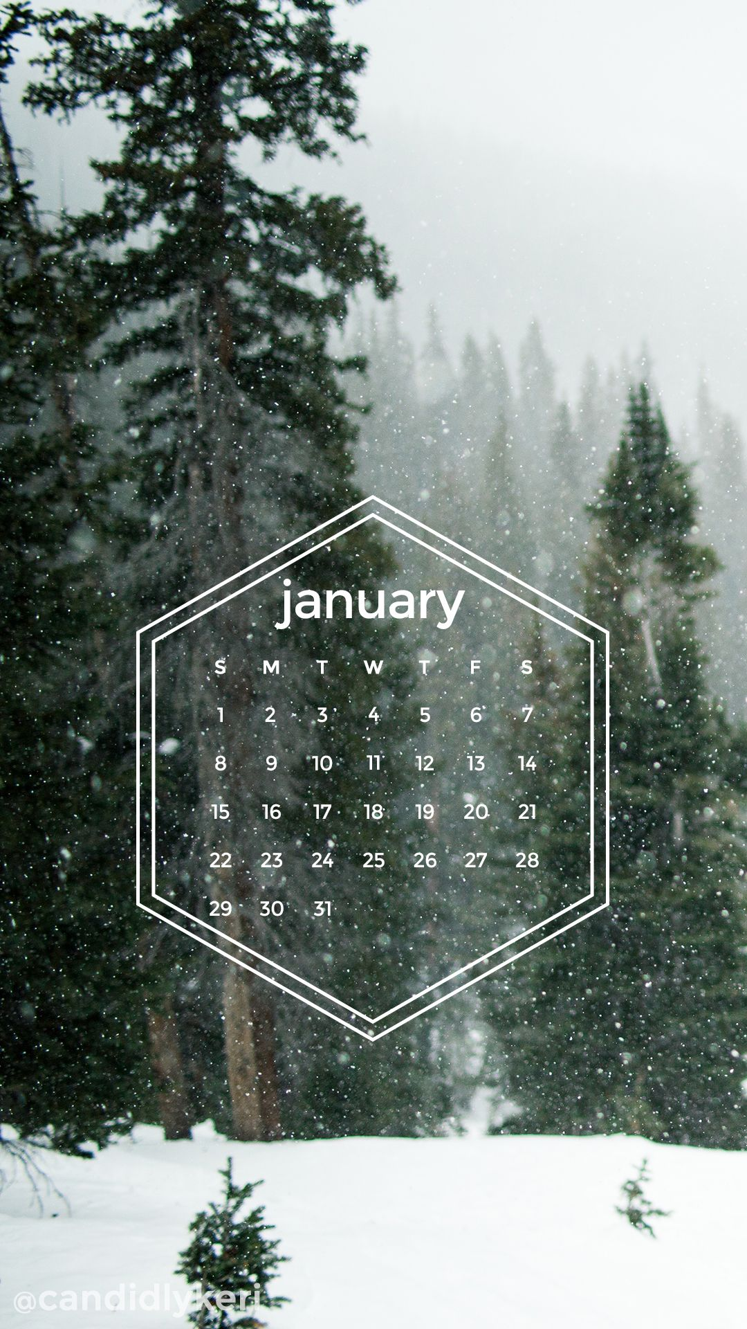 Snow forest pine trees snowing geometric January calendar 2017