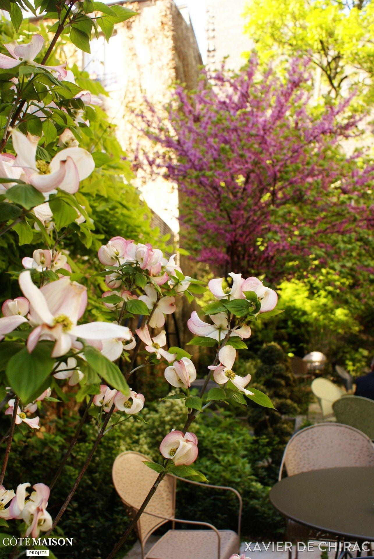pour se prot ger du vis vis dans la jardin il peut tre judicieux d 39 y installer des plantes. Black Bedroom Furniture Sets. Home Design Ideas
