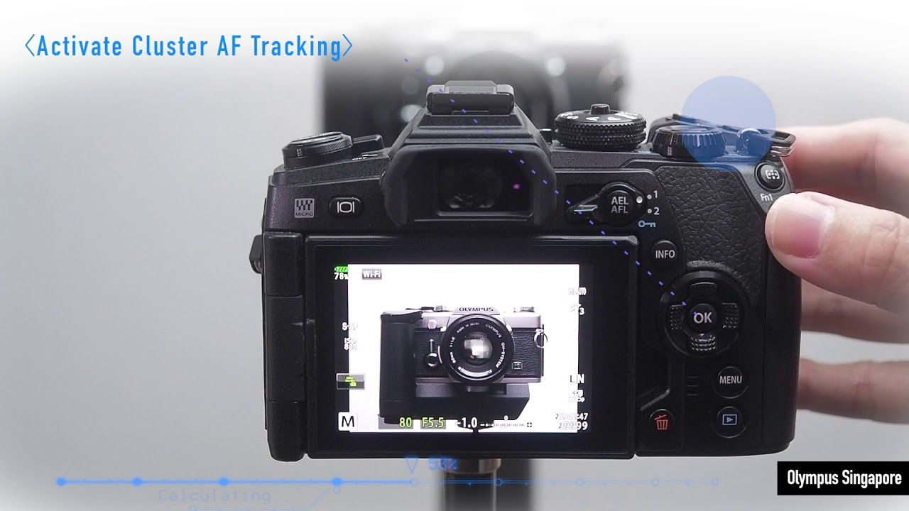 How To Activate Cluster Af Tracking On E M1 Mark Ii Photography And Videography Activated Cluster