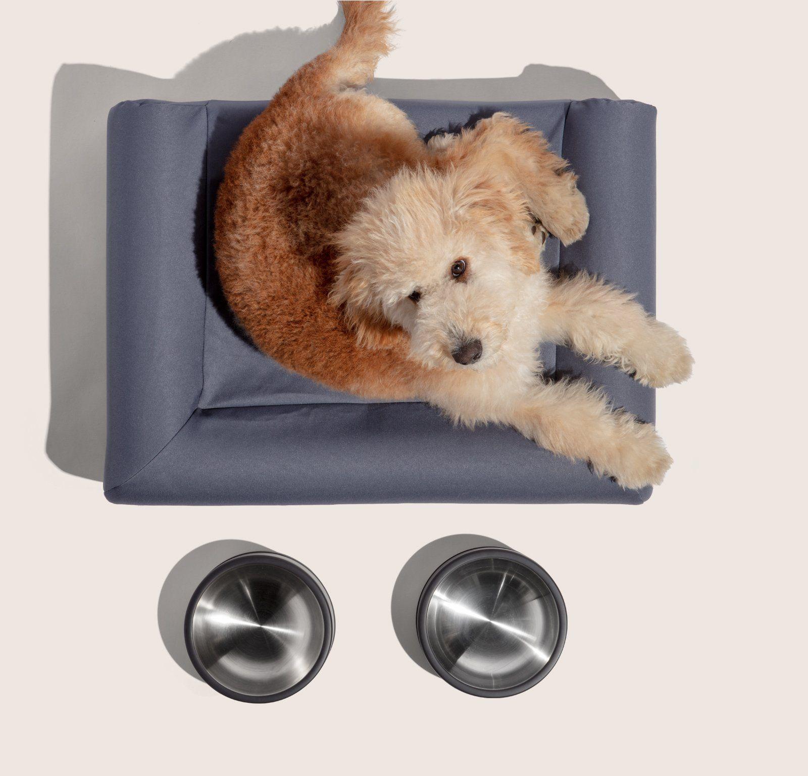 Home Kit Sleeping dogs, Dog bed, Luxury dog