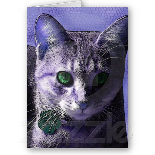 Periwinkle Green-eyed Kitty Cat Greeting Card #cats #cat #greetingcard #card #kittens #kitten #kitty #art #artwork #zazzle
