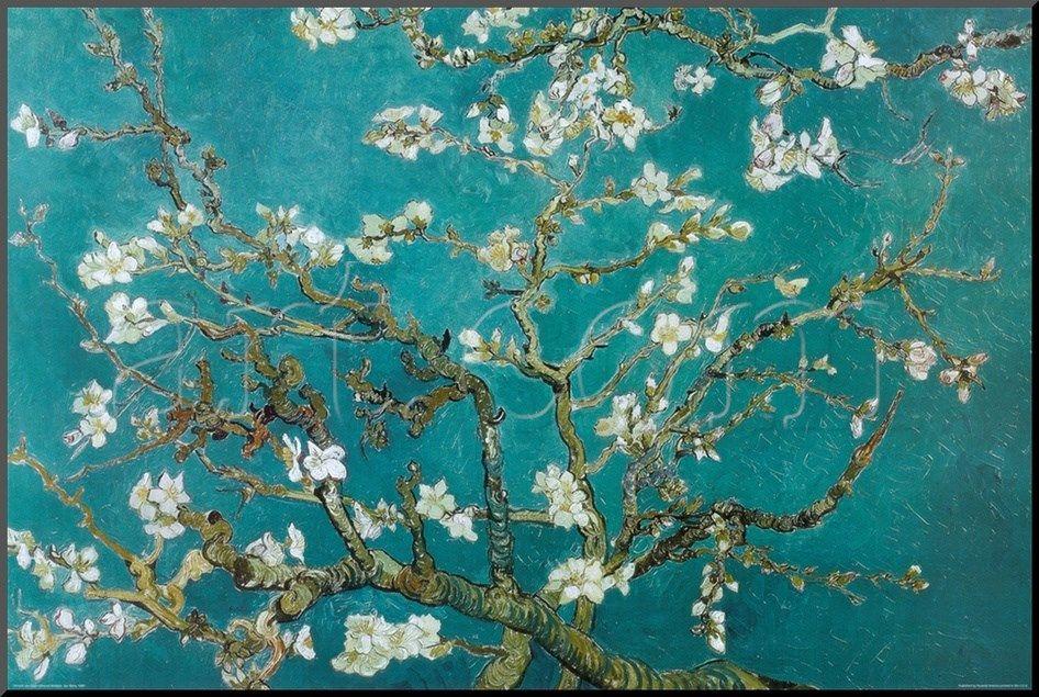 Picasso Cherry Blossom Van Gogh Almond Blossom Van Gogh Wallpaper Van Gogh Art