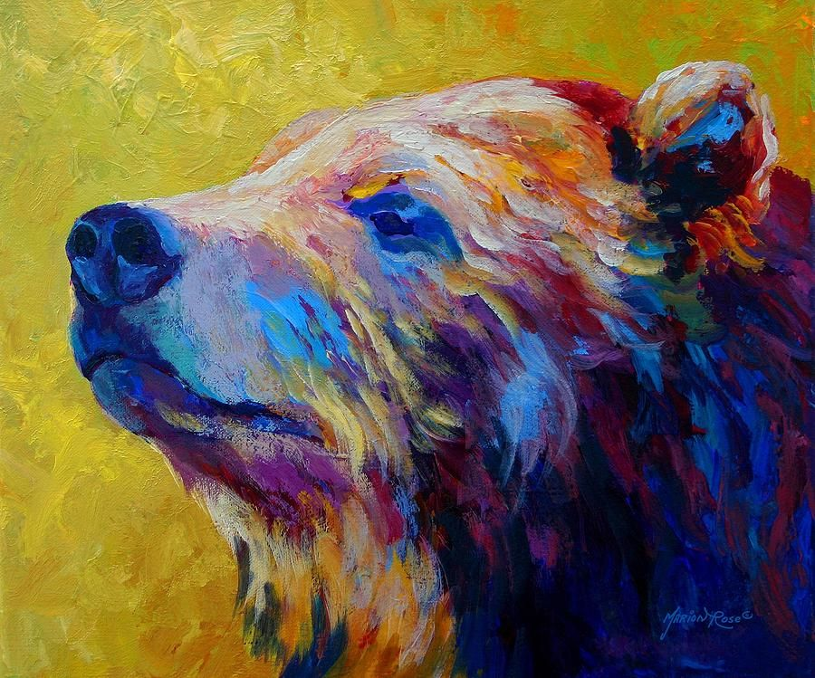 Pretty boy grizzly bear by marion rose bear for Pretty acrylic paintings