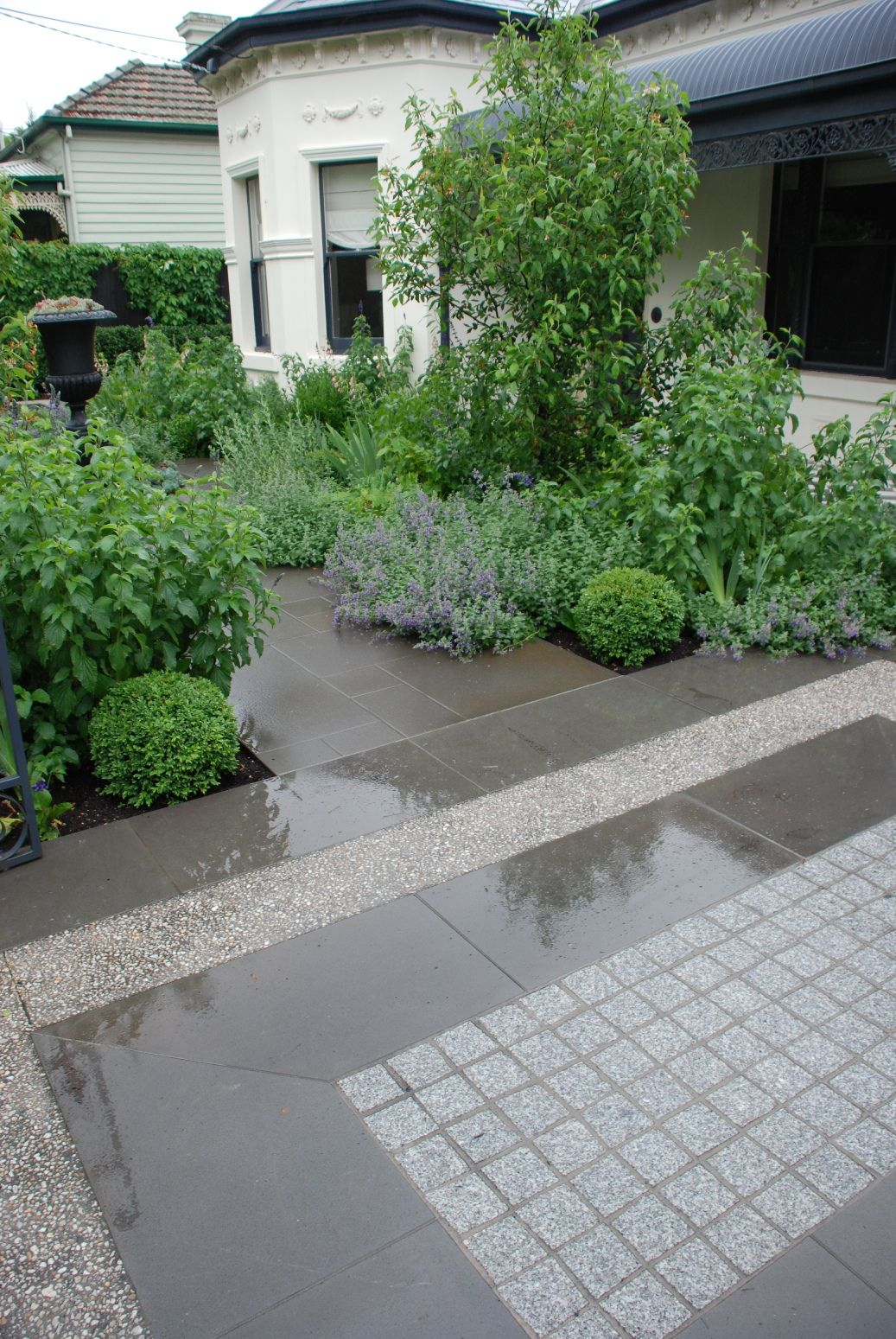 Front Garden In Malvern Melbourne Designed By Jim Fogarty