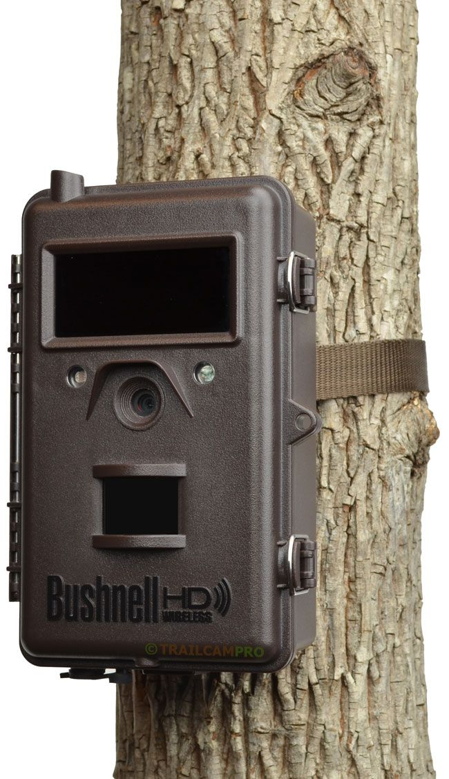 Pretty cool trail cam. Will send pics to cell phone:) my pie in the sky wish:) 2014 Trophy Cam HD Wireless | Bushnell