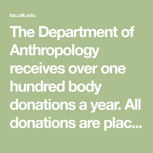 The Department Of Anthropology Receives Over One Hundred