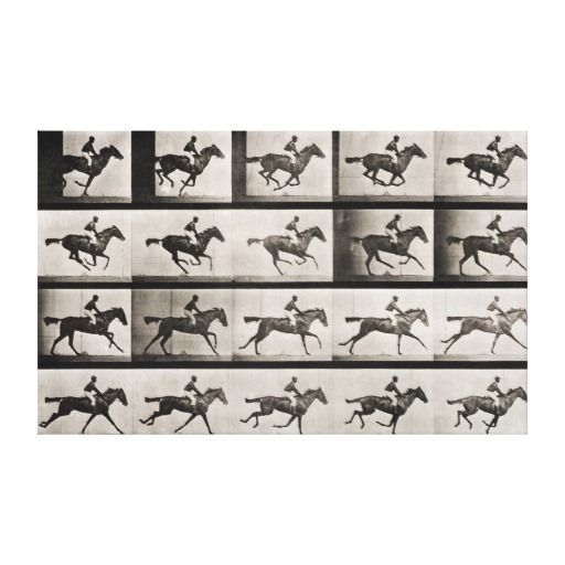 Jockey On A Galloping Horse Plate 627 From Anima Canvas Prints