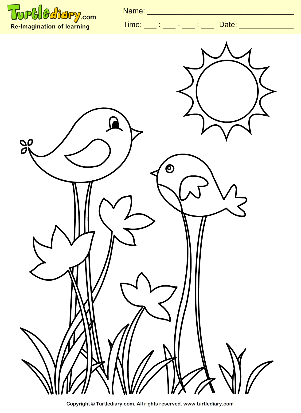 Download Print And Color Turtle Diary S Spring Bird