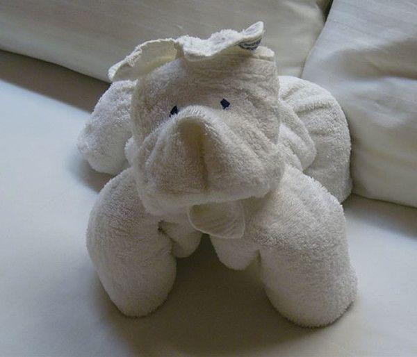 animales-con-toallas-04