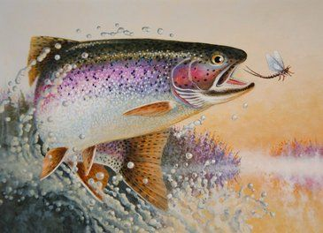trout_stamp.jpg (365×264) | fish | Pinterest | Trout, Fish ...