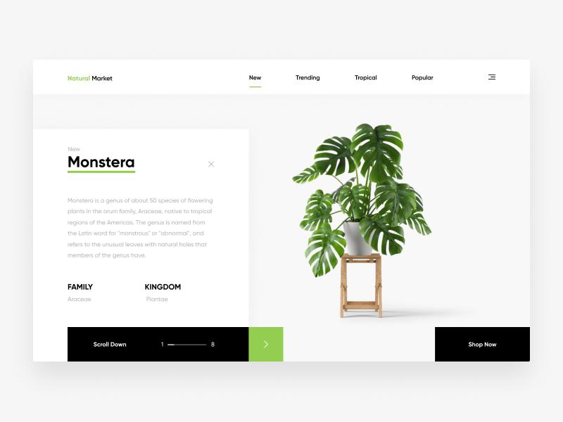 Natural Market Web Design Concept Web Design Quotes Web Design Marketing Minimal Web Design