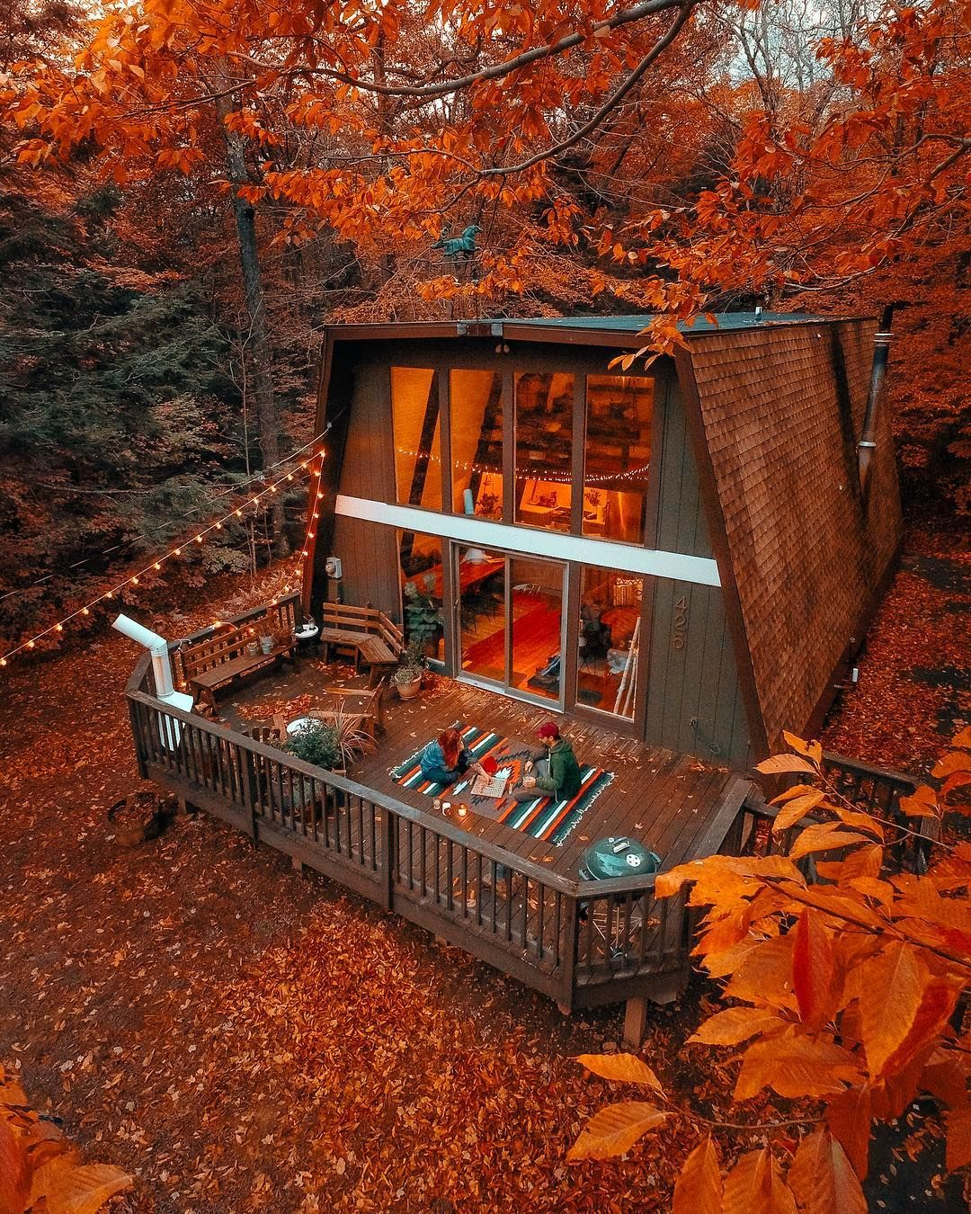 Photo of You Can Stay At This Adorable Hidden Greenhouse In The Forest Near Ontario