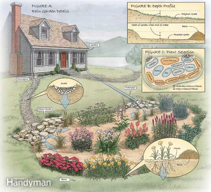 How to Build a Rain Garden in Your Yard Garden soil Coffee and Drop