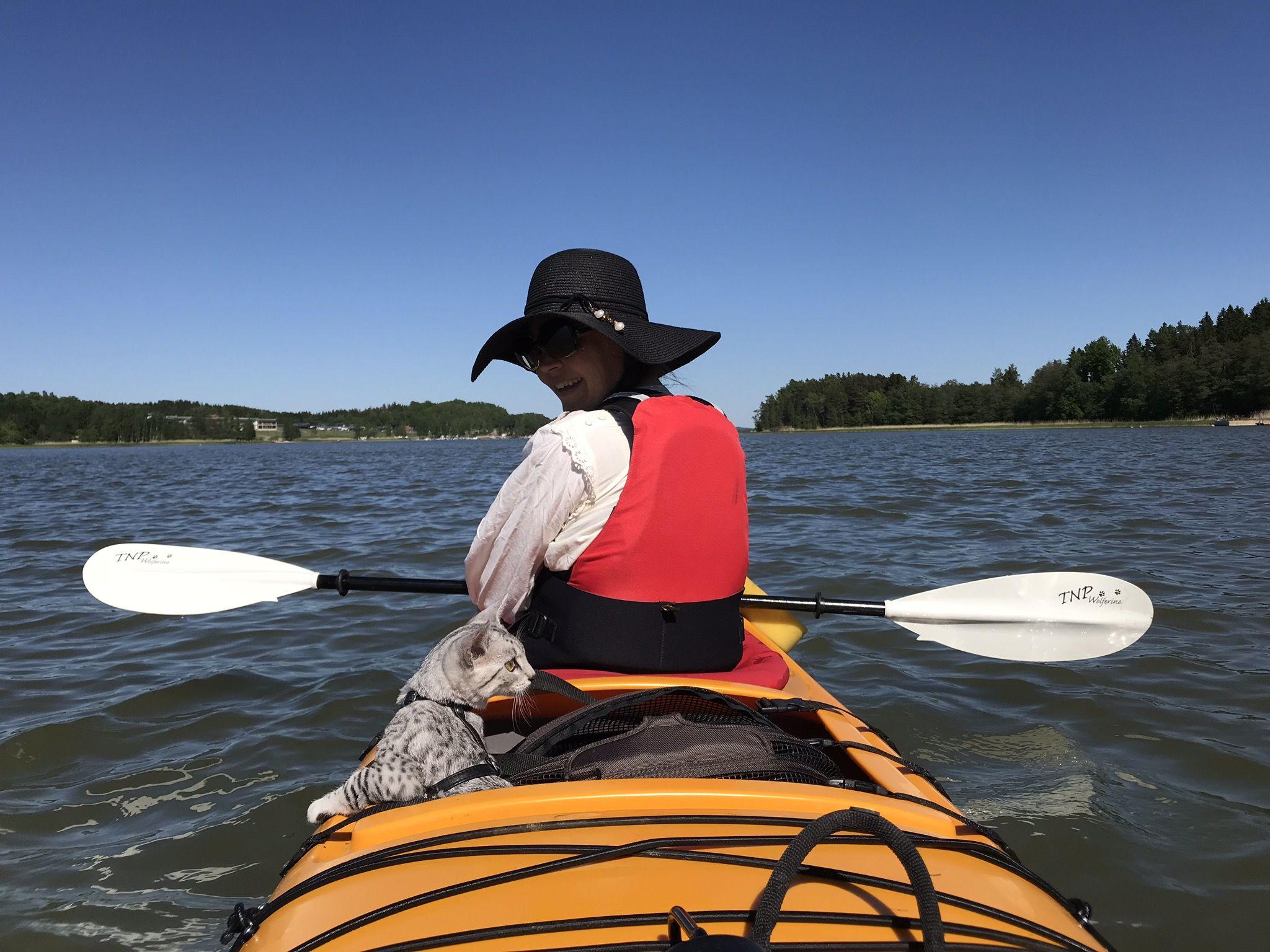 First kayak tour egyptian mau kayak tours kayaking