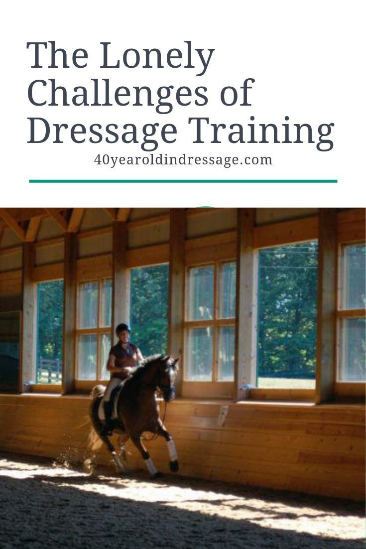 The challenges of dressage training are something we confront alone, and in our own…