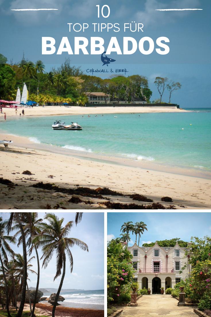 10 Top Tipps Fur Deinen Barbados Urlaub In Der Karibik In 2020 Barbados Urlaub Karibik Urlaub Urlaub