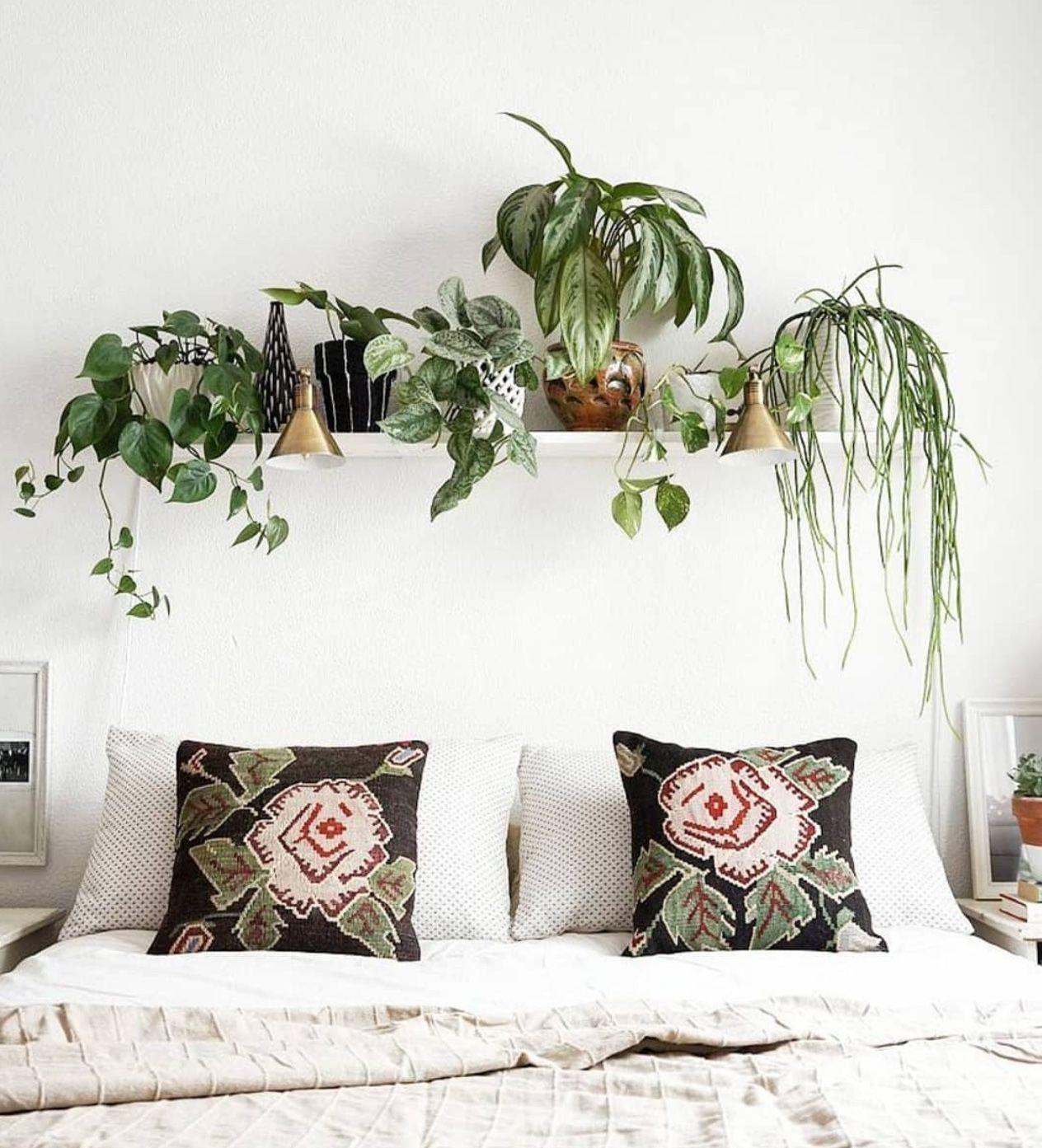 Pin By Ray C Molinar On Cvety Komnatnye Wall Decor Bedroom Bedroom Design Home Decor