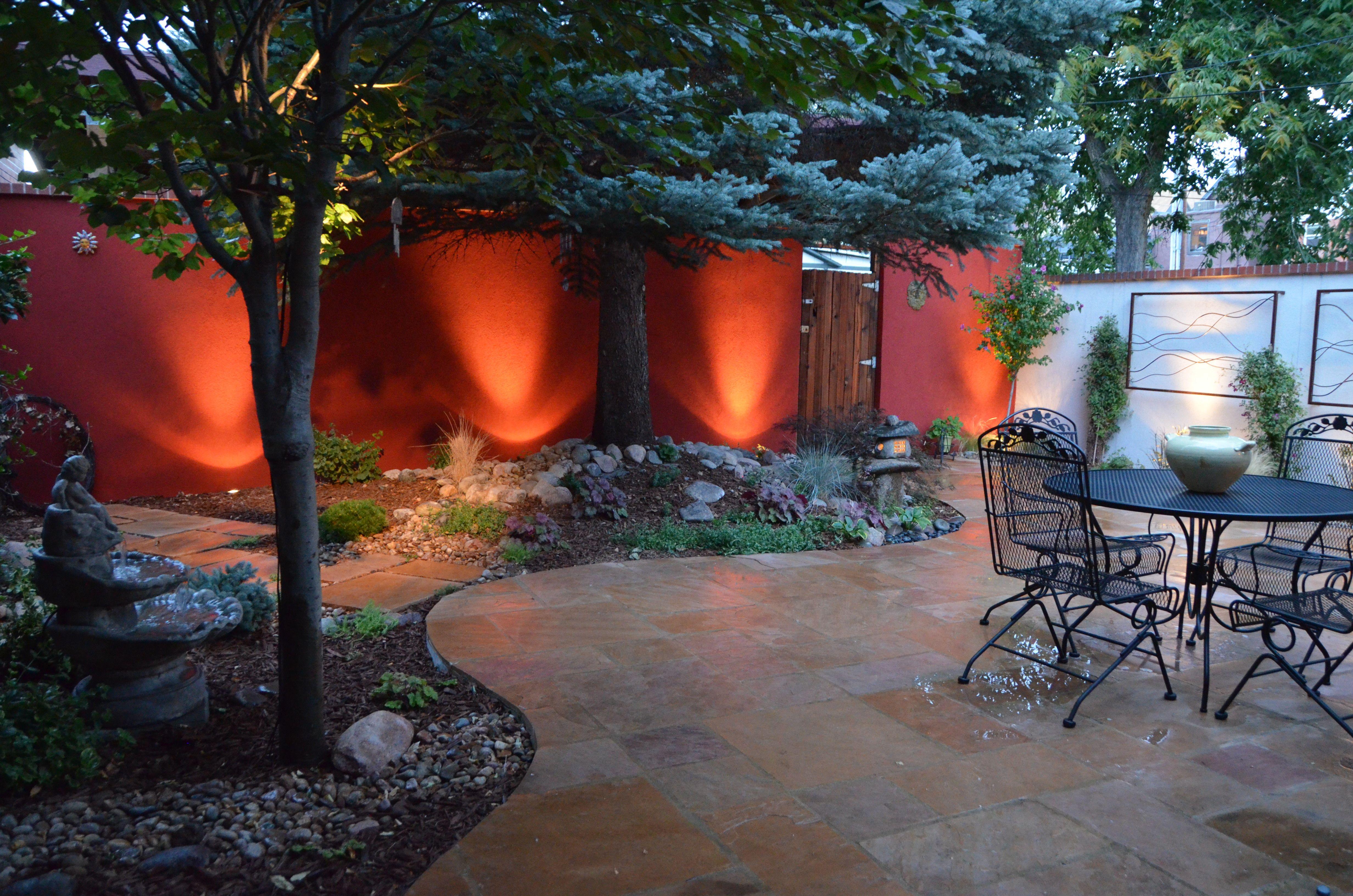 I Like The Drama Of Painted Stucco Wall Backyard Layout Backyard Small Patio Garden