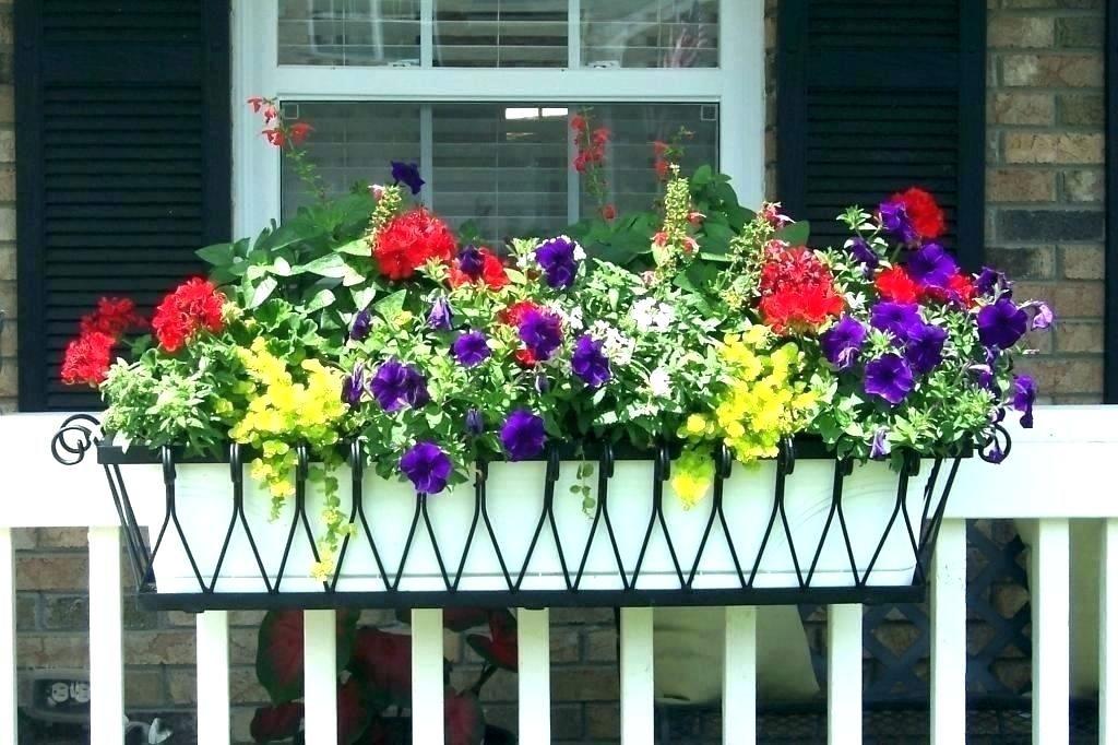 Railing Planter Box Balcony Deck Planters Boxes Hanging Ideas Flower Id Feelingradio Co Window Box Flowers Balcony Flower Box Porch Flowers