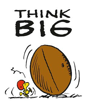 Image result for peanuts woodstock football;;