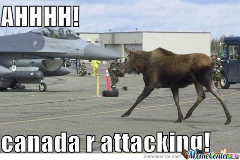 a6bd492288ae82cbf9f8b8d802a37648 canadian political memes canadian pinterest people online,Funny Canada Meme