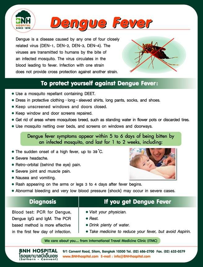 How Long Does It Take To Get Dengue Fever