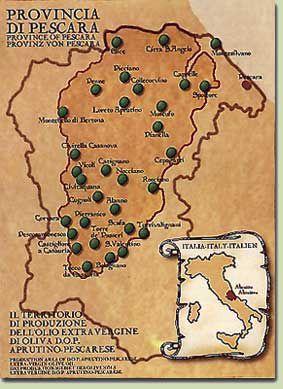 Best olive oil map Abruzzo Province of Pescara Consorzio Aprutino
