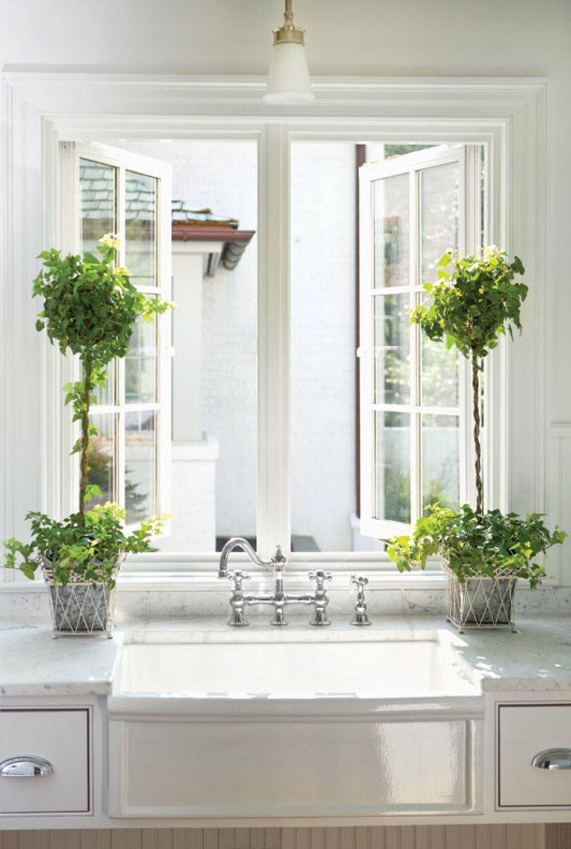 7 Best Houseplants For The Kitchen Kitchen Plants Modern