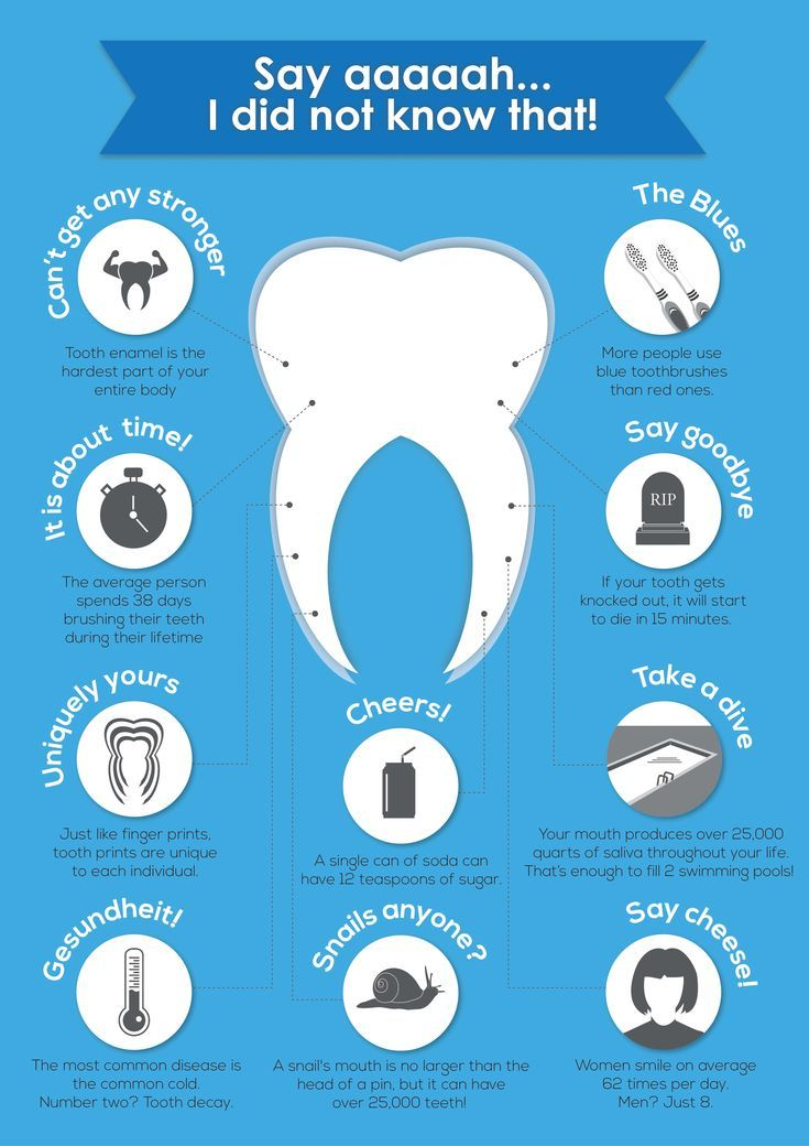 10 Cool Facts About Our Teeth #dentalfacts