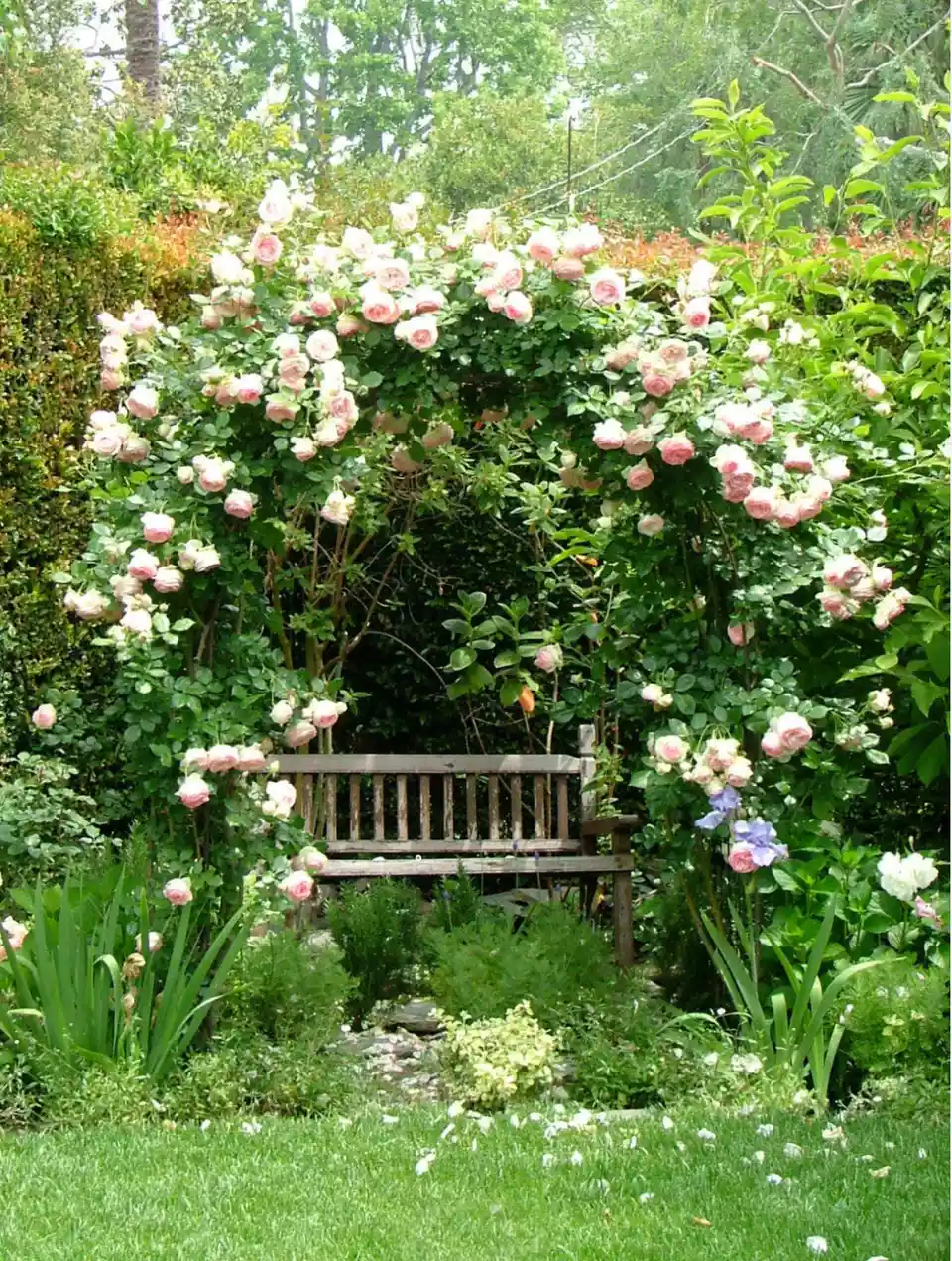 Photo of 30 English Garden Design Ideas We Love