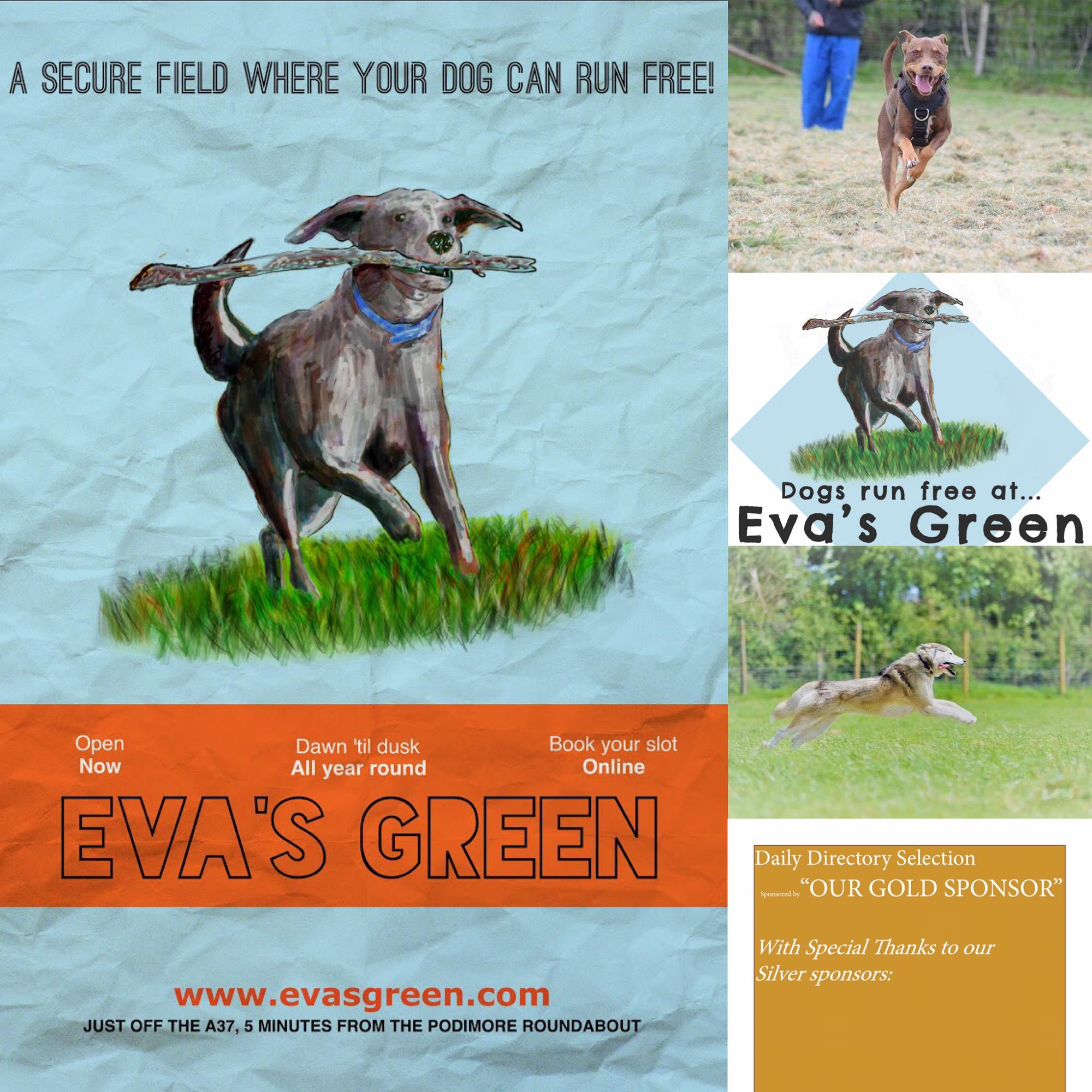 Eva S Green Enclosed Dog Field Eva S Green Steart Lane Somerton Somerset Ta11 7bd Book At Www Evasgreen Com Connect With U Dog Play Area Dog Walking Dogs