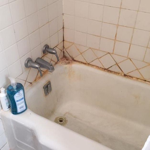 Mold Is A Form Of Fungus That Actually Surrounds Us In The Natural Environment In The Bathroom