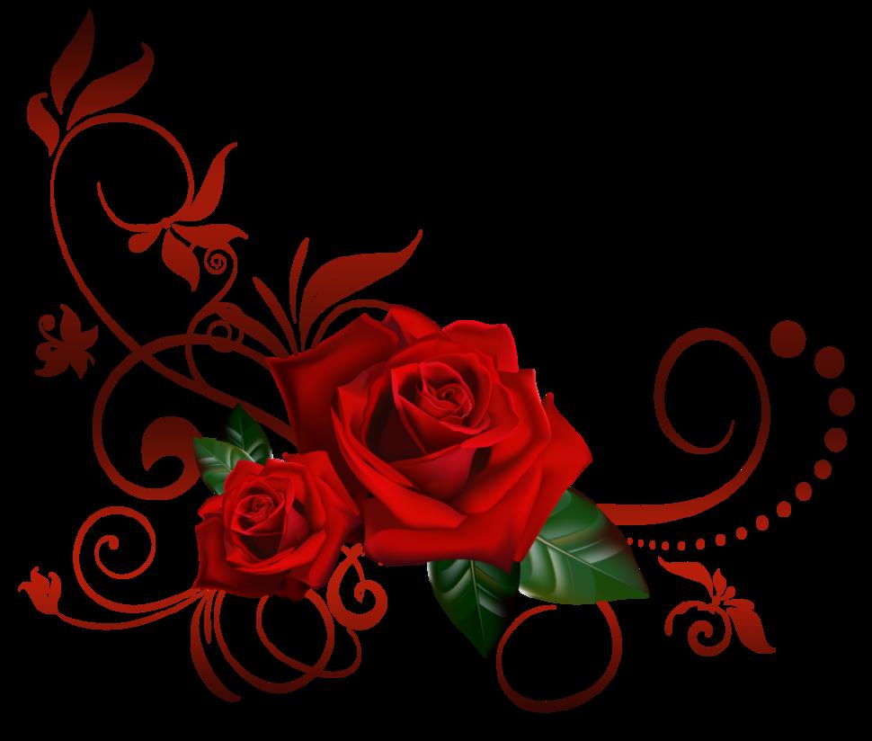 Открытки розы в фотошопе