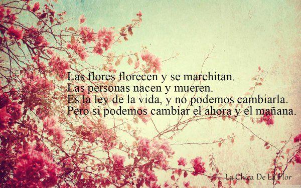 La Chica De La Flor (@LaChicaDeLaFlor) | Twitter