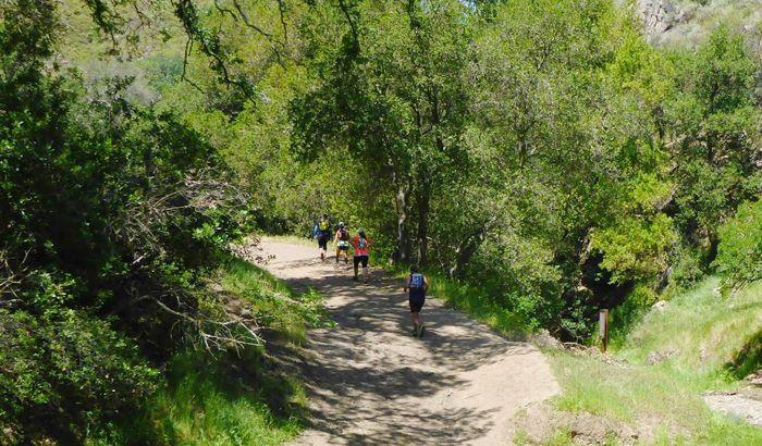 Diablo Trails Challenge 50K Half Marathon 10K 5K Saturday April TBA 2017 Castle Rock Park, Walnut Creek, CA
