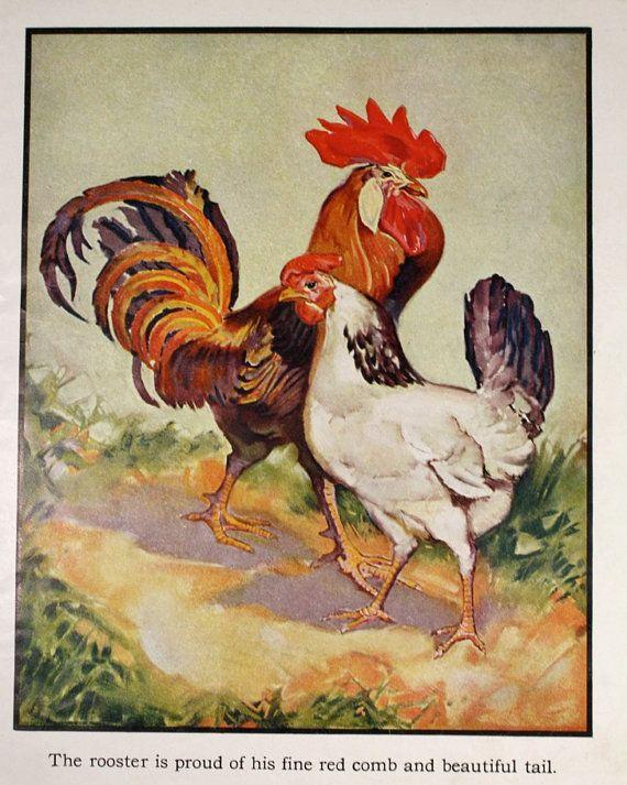 Vintage 1933 Childrens Book Plate Illustration- Farm ...