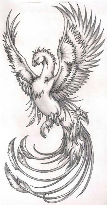 Phoenix Tattoo   Tatoos   Pinterest   Fénix, Tatuajes y Ave fénix